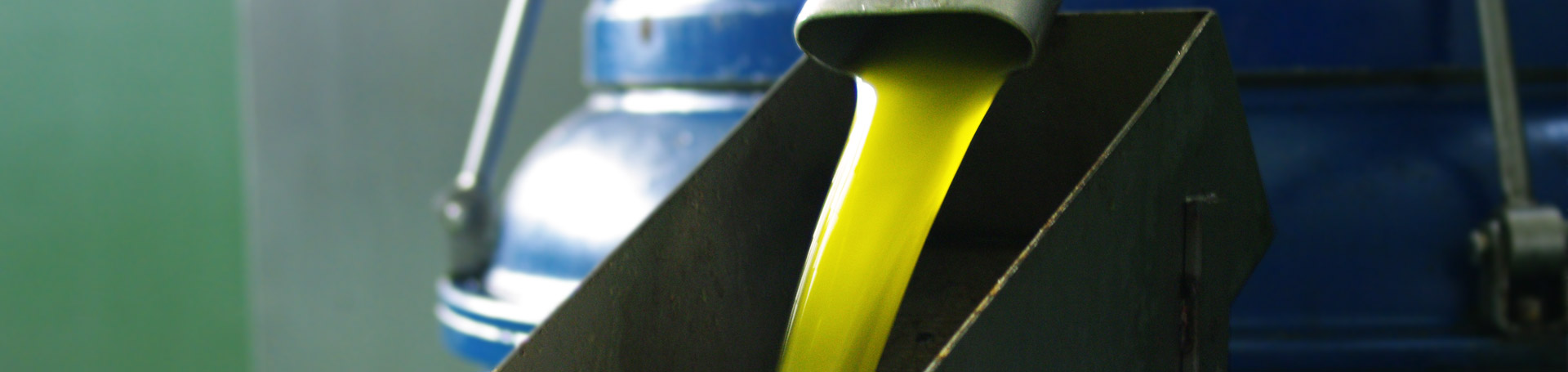 Elitagro, extra virgin olive oil production